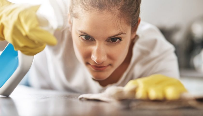 The Right Kind of Cleanliness You Can Hope for in Your House